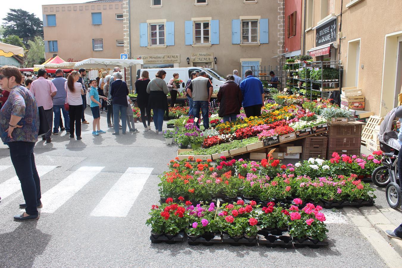 les fleurs et plantes